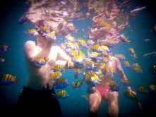 Snorkeling in Manuel Antonio. Photo by Sunset Tours