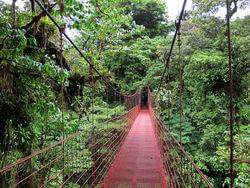 gp_590_800px-monteverde_puente