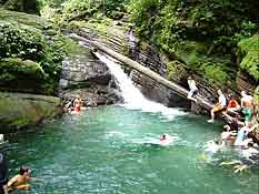Pacuare_2d_swimming