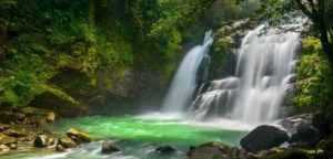 Gecko Trail | What to Do in Costa Rica - When planning your trip to Costa Rica, leave your itinerary to those who can arrange specialized tour and Costa Rica trips befitting your personal taste.